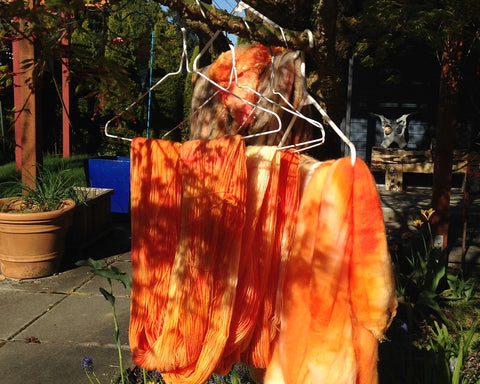 the mostly dry roving and yarns draped on clothes hangers, hanging on a tree branch with planters in the background