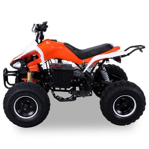 Quad Speedy Eco Électrique 1000 watts 48 volts