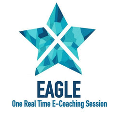 One Real Time eCoaching Session EAGLE - Private Elite Coaching, rowing, Xeno Müller, Elite Rowing Coach