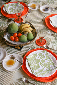 4 Piece Woven Placemat and Coaster Set