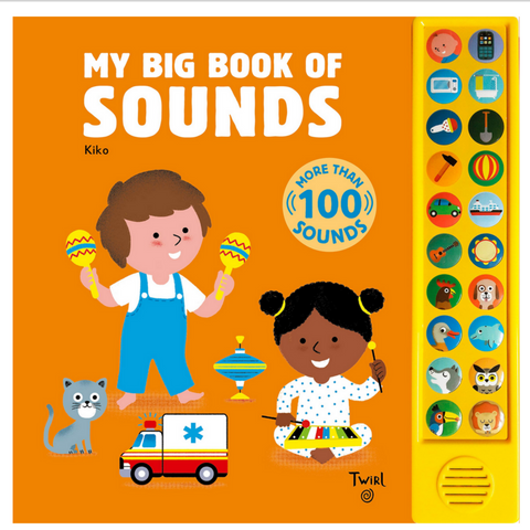 My Big Book of Sounds: More Than 100 Sounds! (0-3yrs)
