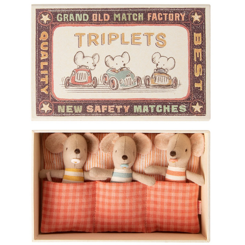 Triplet Baby Mice in Matchbook 3 yrs+