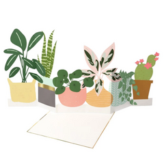 House Plant Concertina Card -Blank