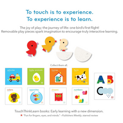 Touch Think Learn: Fly (2-5yrs)