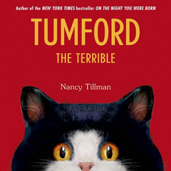 Tumford the Terrible (4-6yrs)