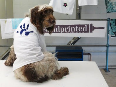 Fletcher – Handprinted's Screen Printing Dog!