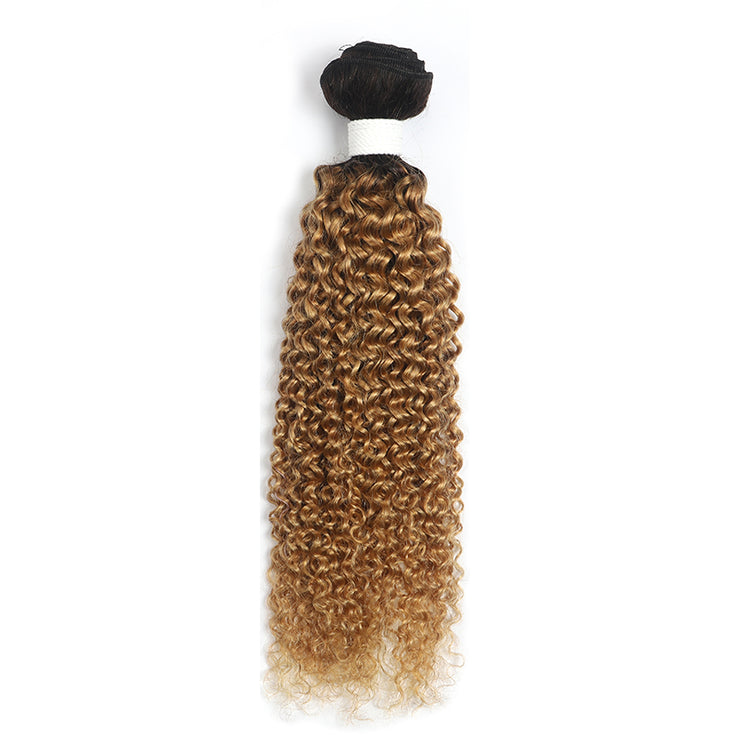 Ombre Honey Blonde Kinky Curly Human Hair Bundle (4330061332550)