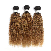 Ombre Honey Blonde Kinky Curly 3 Human Hair Bundles (4330063691846)
