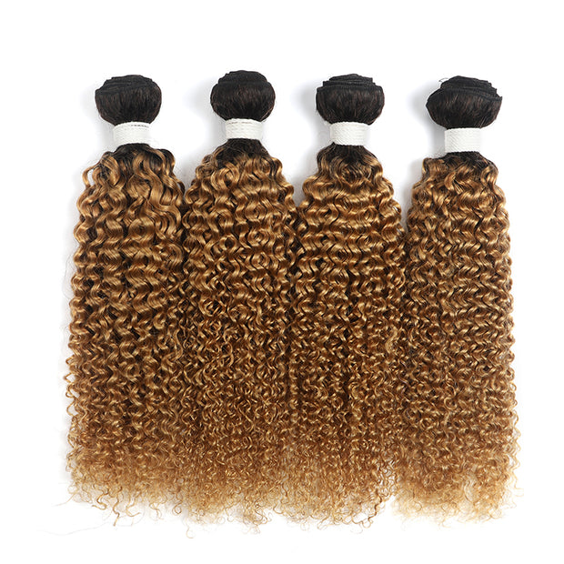 Ombre Honey Blonde Kinky Curly 4 Human Hair Bundles