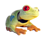 Bobble Head Tree Frog - Pop Culture Spot