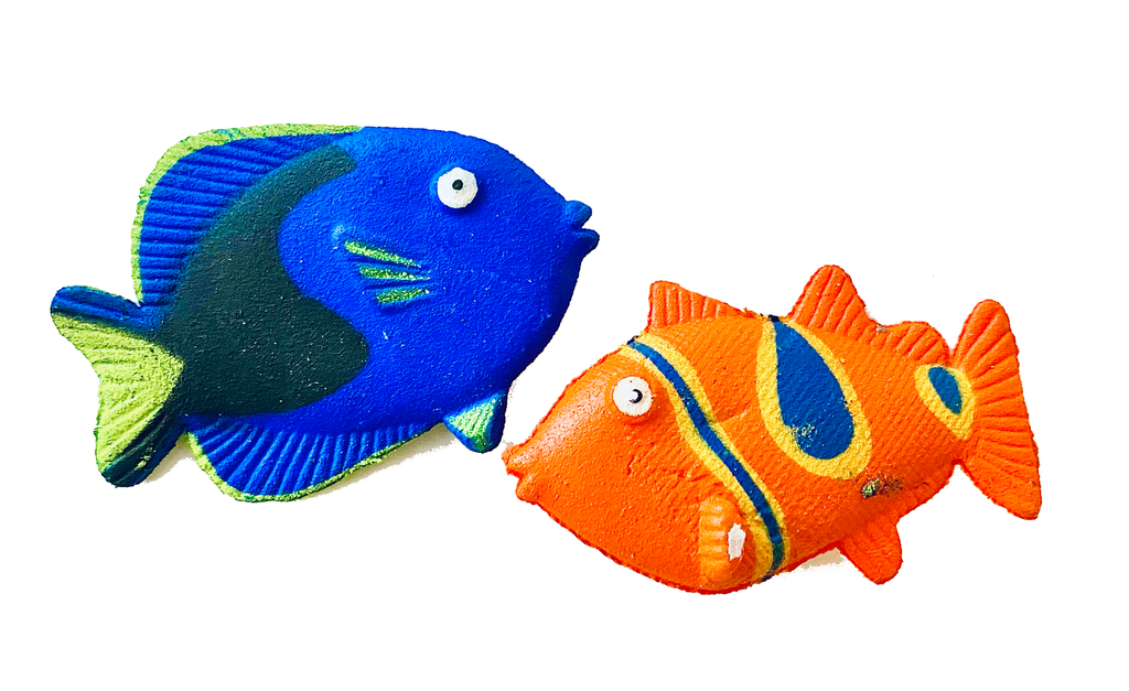 Growing Fish Amazing Color Expanding in Water Science Toy