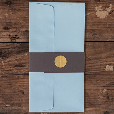DL Envelopes - Pack of 5 - Kingfisher