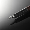 Pilot Falcon Fountain Pen Steel Barrel Black Soft Extra Fine