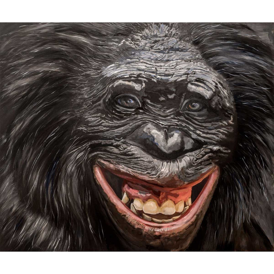 Bonobo, Oil painting on canvas by Chiusano Carla - Fp Art Online