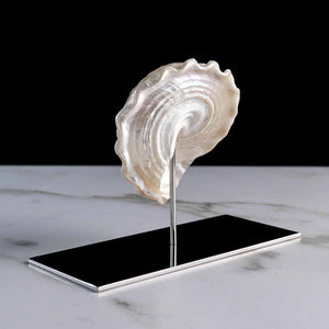 "Delice, Mother-of-pearl ""trochus"" shell on a stainless steel frame by Maritime Objects - Fp Art Online"