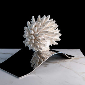 "Vague, ""White Finger"" coral on a stainless steel frame by Maritime Objects - Fp Art Online"
