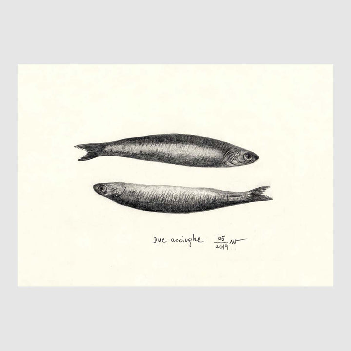 Anchovy Placemats with waterproof print pencil drawing by Placemats - Fp Art Online