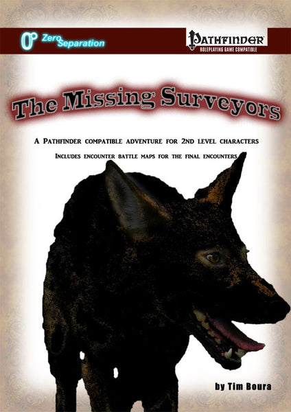 The Missing Surveyors