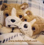 Bulldog Stuff Your Own Teddy Bear from Teddy Bear Loft