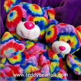 Multi colored teddy Bear from Teddy Bear Loft