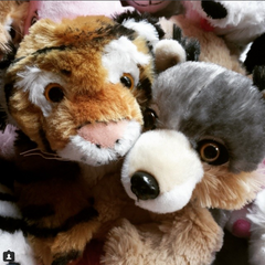 Stuff your own teddy bear tiger and wolf