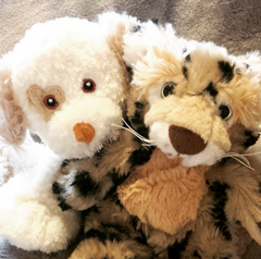 Stuff your own teddy bear by Teddy Bear Loft Puppy dog Leopard