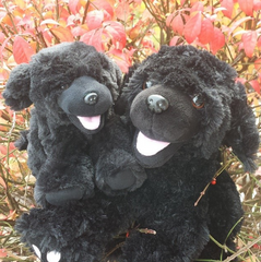 Black Lab stuff your own teddy bears by Teddy Bear Loft