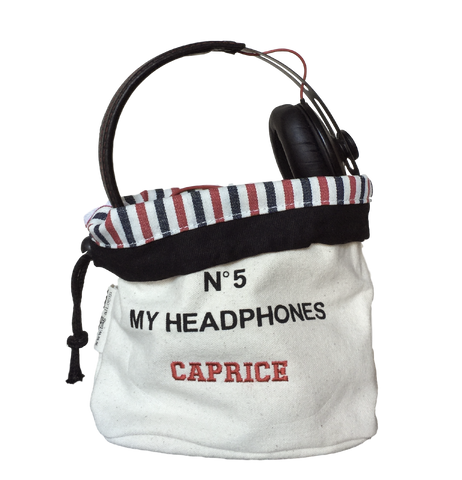 headphone case perfect gift
