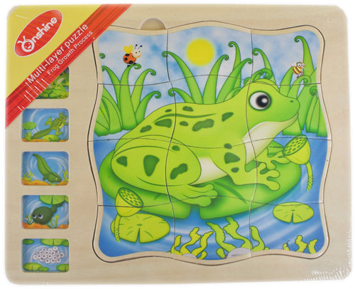 Multi-Layer Frog Puzzle