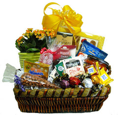 Basketful of Get Well Wishes