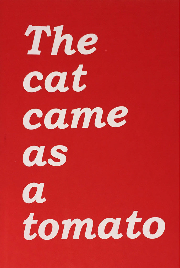 The cat came as a tomato: Conversations on play and contemporary art practice from the South London Gallery