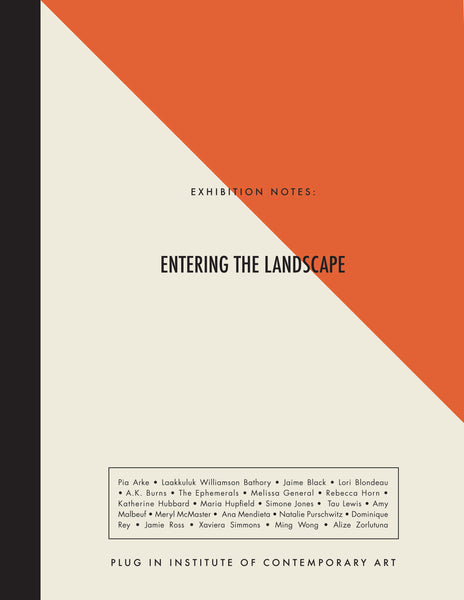 Exhibition Notes: Entering The Landscape