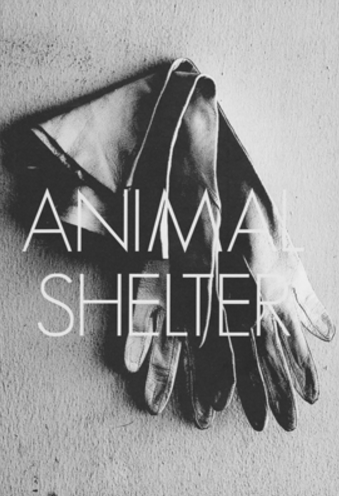 Animal Shelter: Issue 2