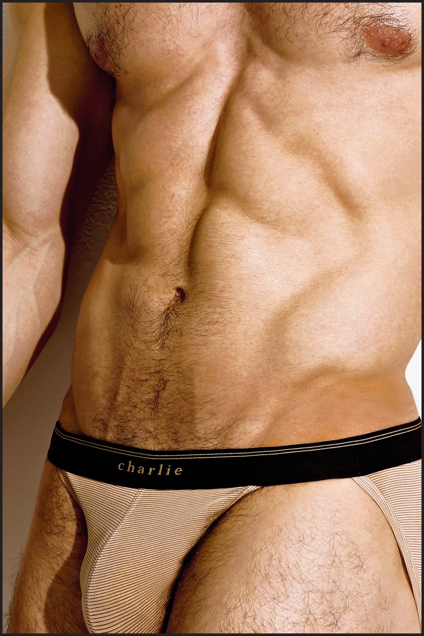 Charlie by Matthew Zink Wood Underwear Sport Brief