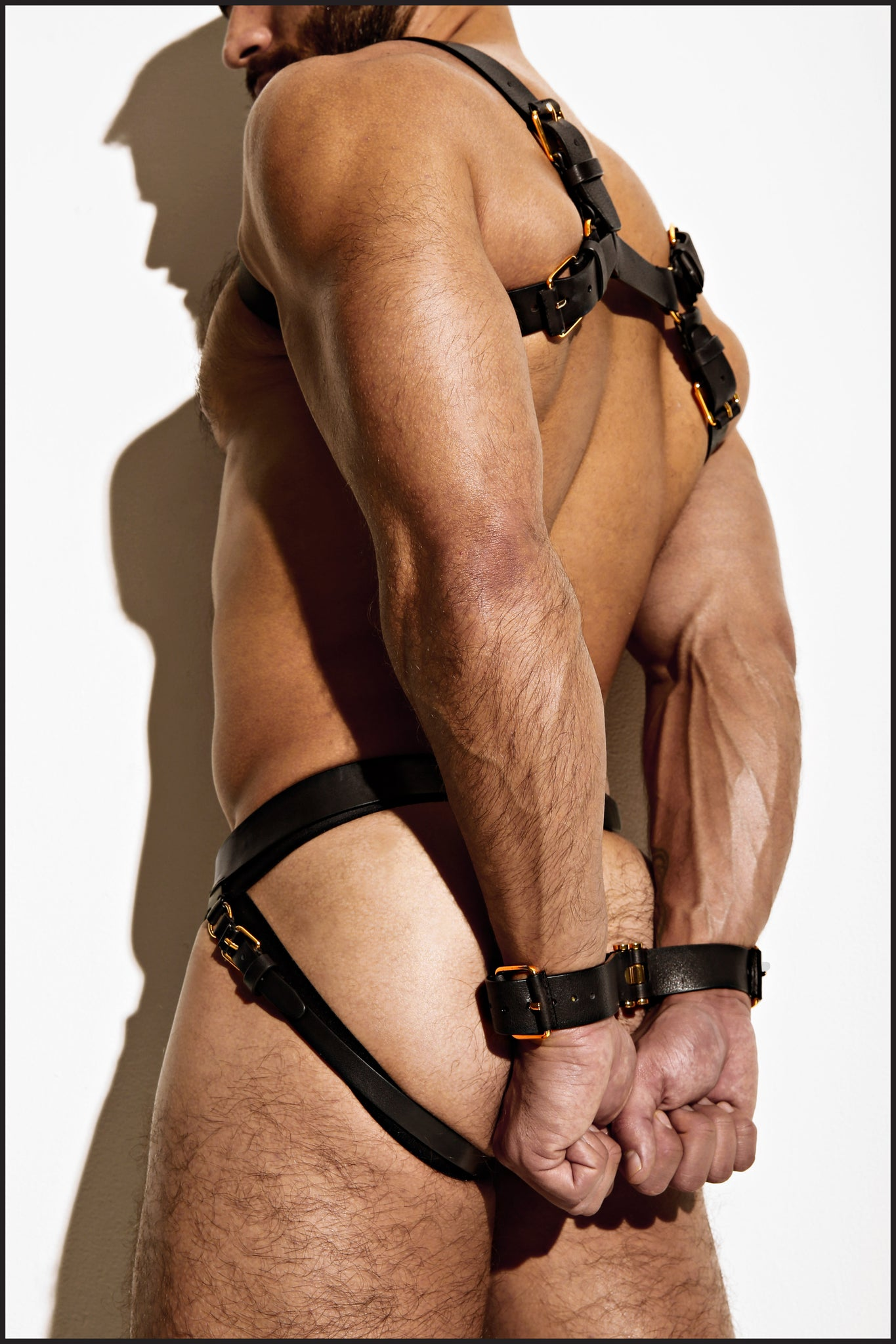 Leather Restraints