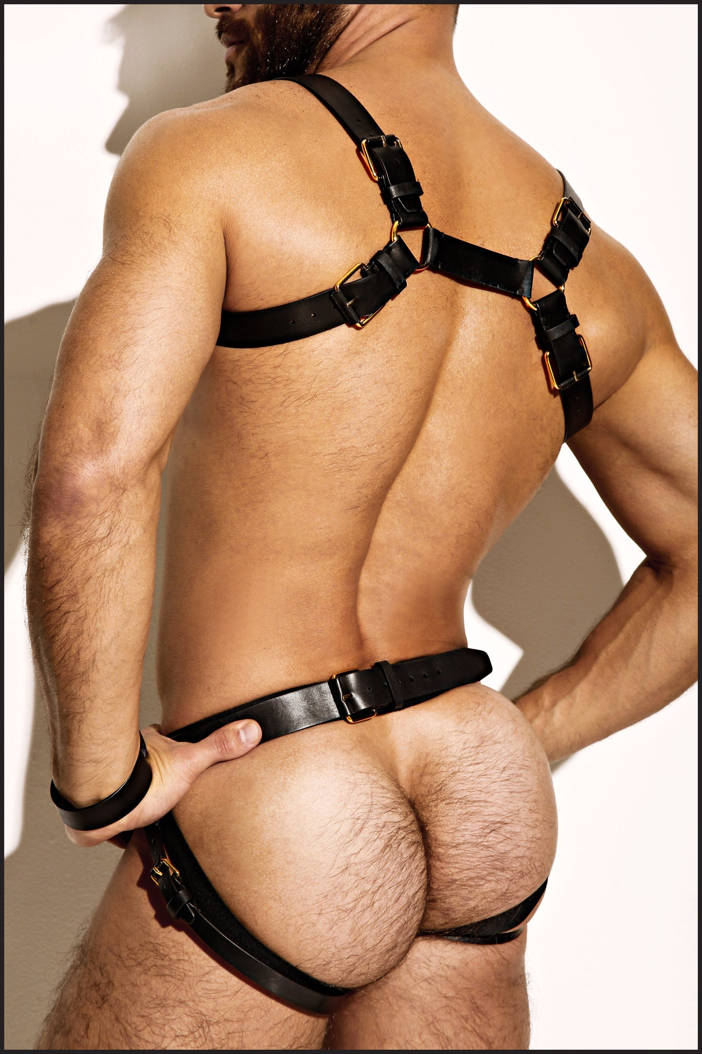 Single Grecian Harness