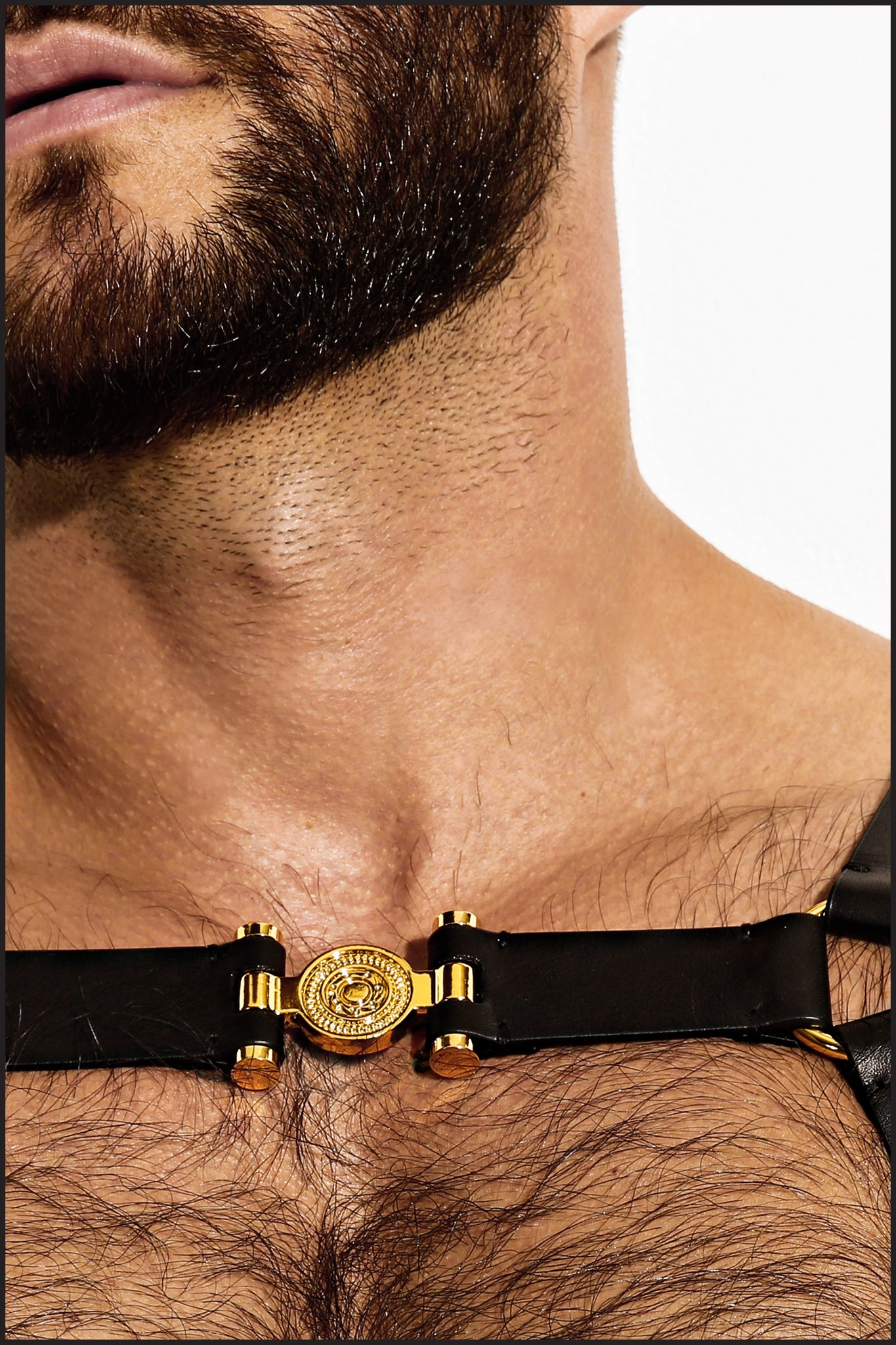 Charlie by Matthew Zink Mens Leather Single Grecian Chest Harness