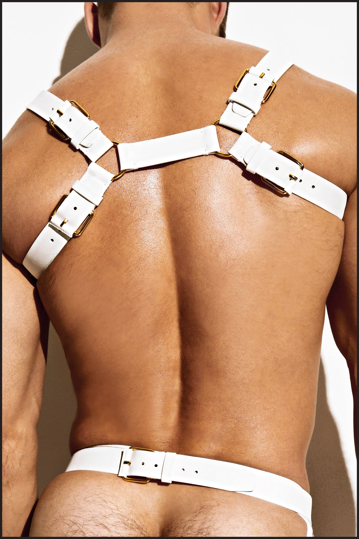 Double Grecian Harness