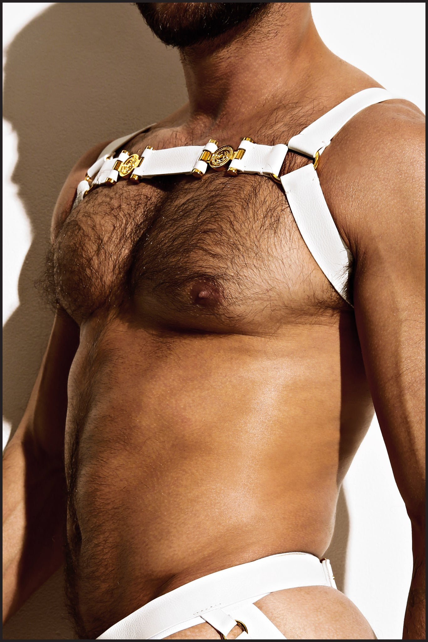 Charlie by Matthew Zink Mens Leather Double Grecian Chest Harness