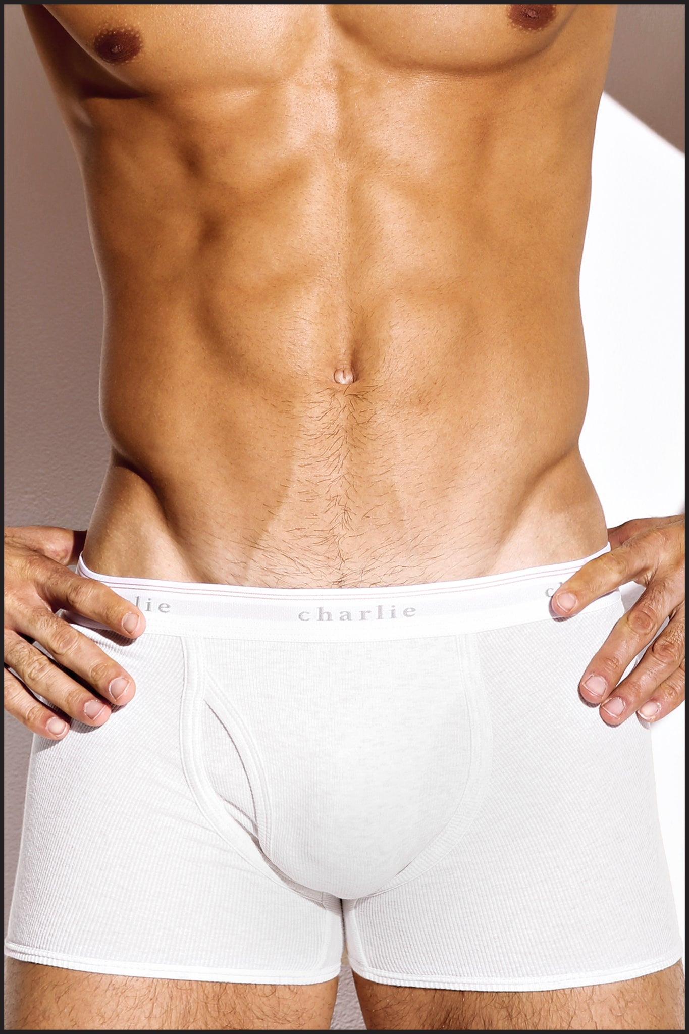 Charlie by Matthew Zink Mens Underwear Original Boxer