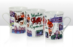 Iconic Wales - New Bone China Mug
