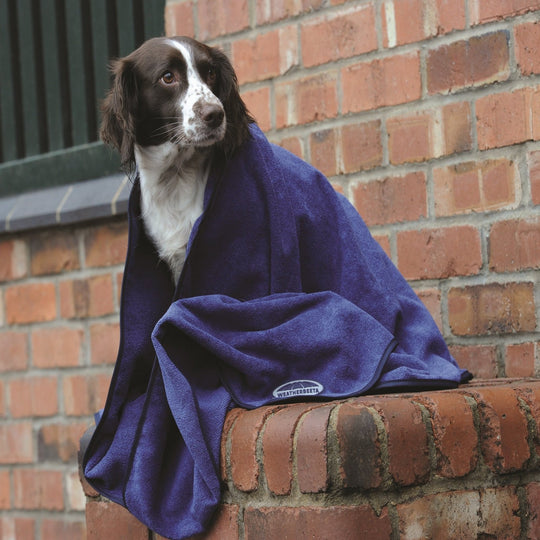 WEATHERBEETA DOG TOWEL