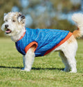 WEATHERBEETA COMFITEC PUFFER DOG COAT