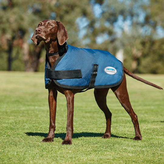 WEATHERBEETA COMFITEC CLASSIC DOG COAT