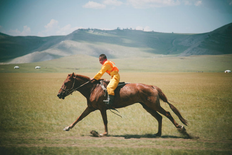 Naadam horse race- children as young as six years old race the community's fastest horses in an all out sprint across the steppe. After the race men swept the boy off the winning horse and proceeded to gather the horse sweat with their hands and spread it across their own bodies.