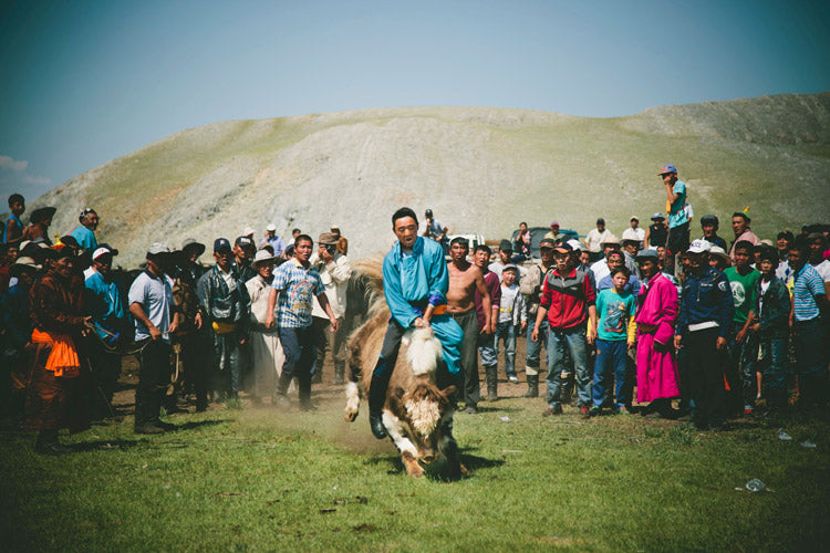 Naadam Yak Jumping— nobody lasted more than a couple jumps with each ride ending in a spectacular crash.