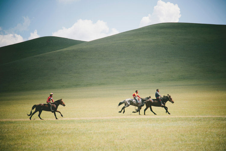 Naadam Horse Race— I photographed the race while hanging out of a speeding Land Cruiser that left the ground more than once. Men screamed at the top of their lungs urging on the terrified riders.