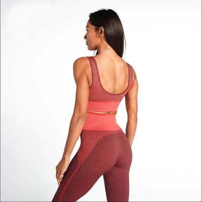 Dry Fit Seamless BRA & LEGGINGS SET