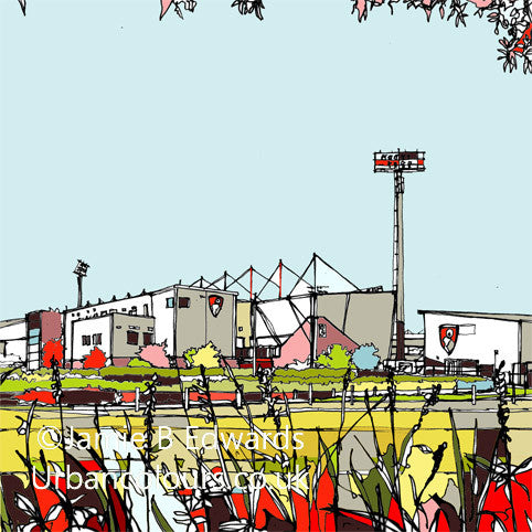 AFC Bournemouth's print of Dean Court Vitality stadium image of