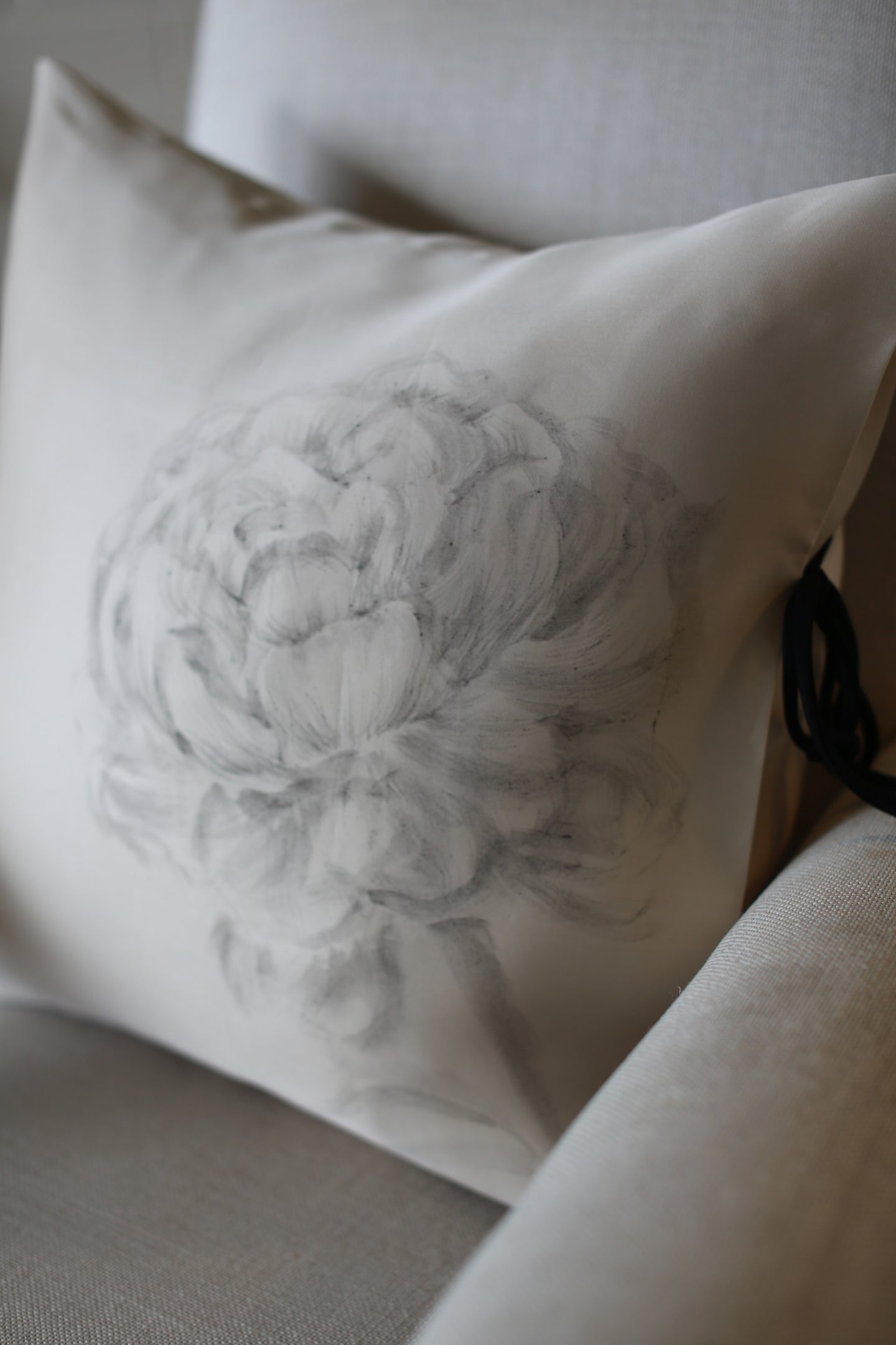 Hand Painted Silk Organza Pillow Cover
